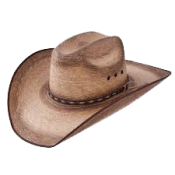 Cowboy Hat (13)