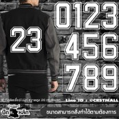 FLEX numbers 0-9 patch, large pieces, white color/Size 20*12cm, can be ironed on football shirts, jackets, etc., No.P7Aa53-0039, ready to ship!!!!