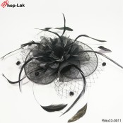 Hairpin, mesh, roll, flower, ribbon + stick, feather, fashion, hairpin, hat, feather, hairpin, hat, hair stick Hairpin Hat Mesh Hat Hair Stick Vintage Black No.F5Aa33-0011
